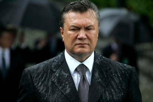 Янукович мокрий