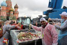 Москва салат