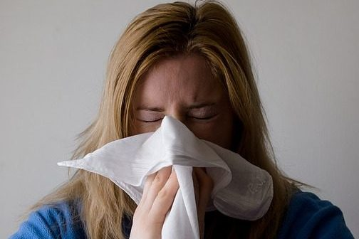грип pixabay