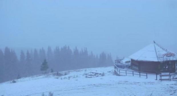 Перший сніг Карпати