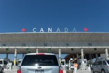 сайт миграции канады лег