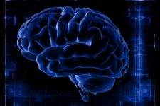 58110674 - the study of the brain on the screen. brain on a dark blue background. x-ray snapshot.
