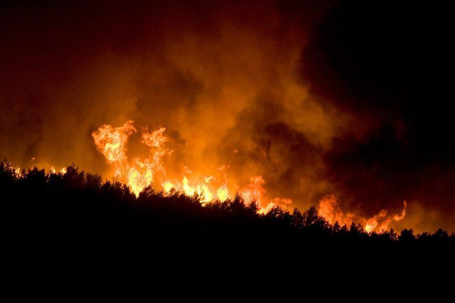 Пожежі в Хайфі