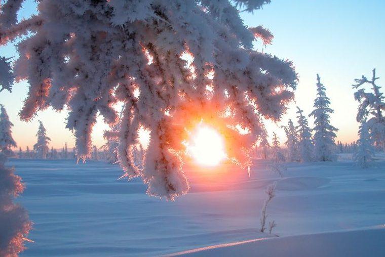 Зимове сонцестояння