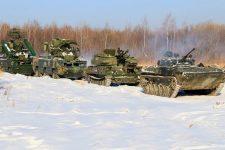 ros-tanky-zyma