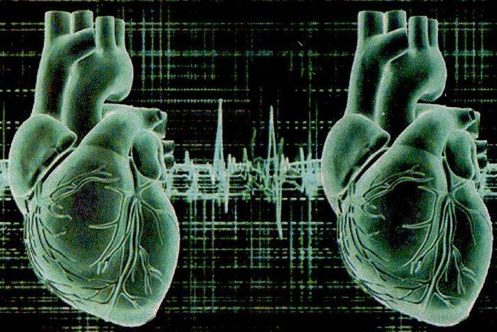 Люди с 2-мя сердцами могут быть представителями свежей расы— Ученые