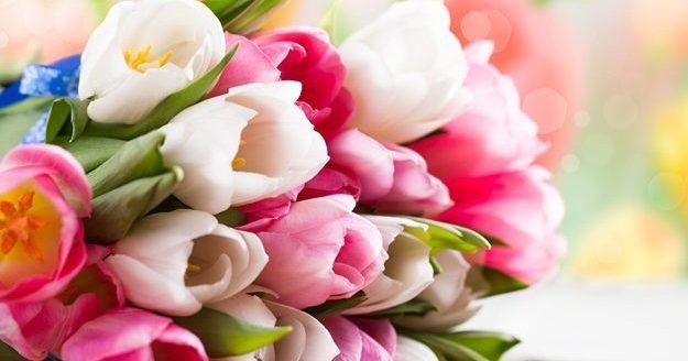 Картинки красивые цветы со смыслом (37 фото) Прикольные