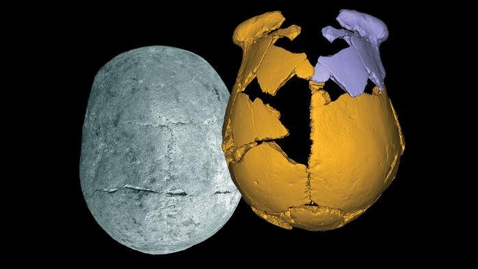 Археологи обнаружили в Китае останки неизвестного вида людей