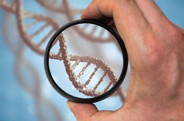 Генетики доказали, что украинцы ирусские неявляются «братскими народами»