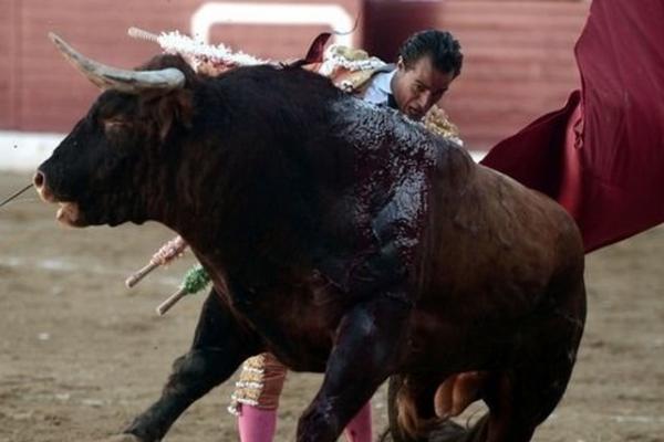 Популярный испанский матадор умер вовремя корриды воФранции