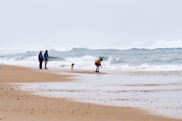 УФранції напляж винесло понад півтори тонни кокаїну