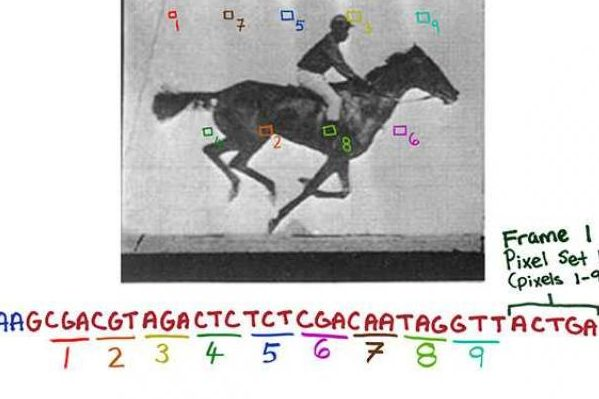 Запис на ДНК