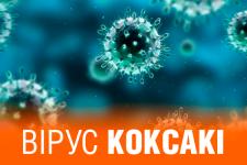 вірус Коксакі