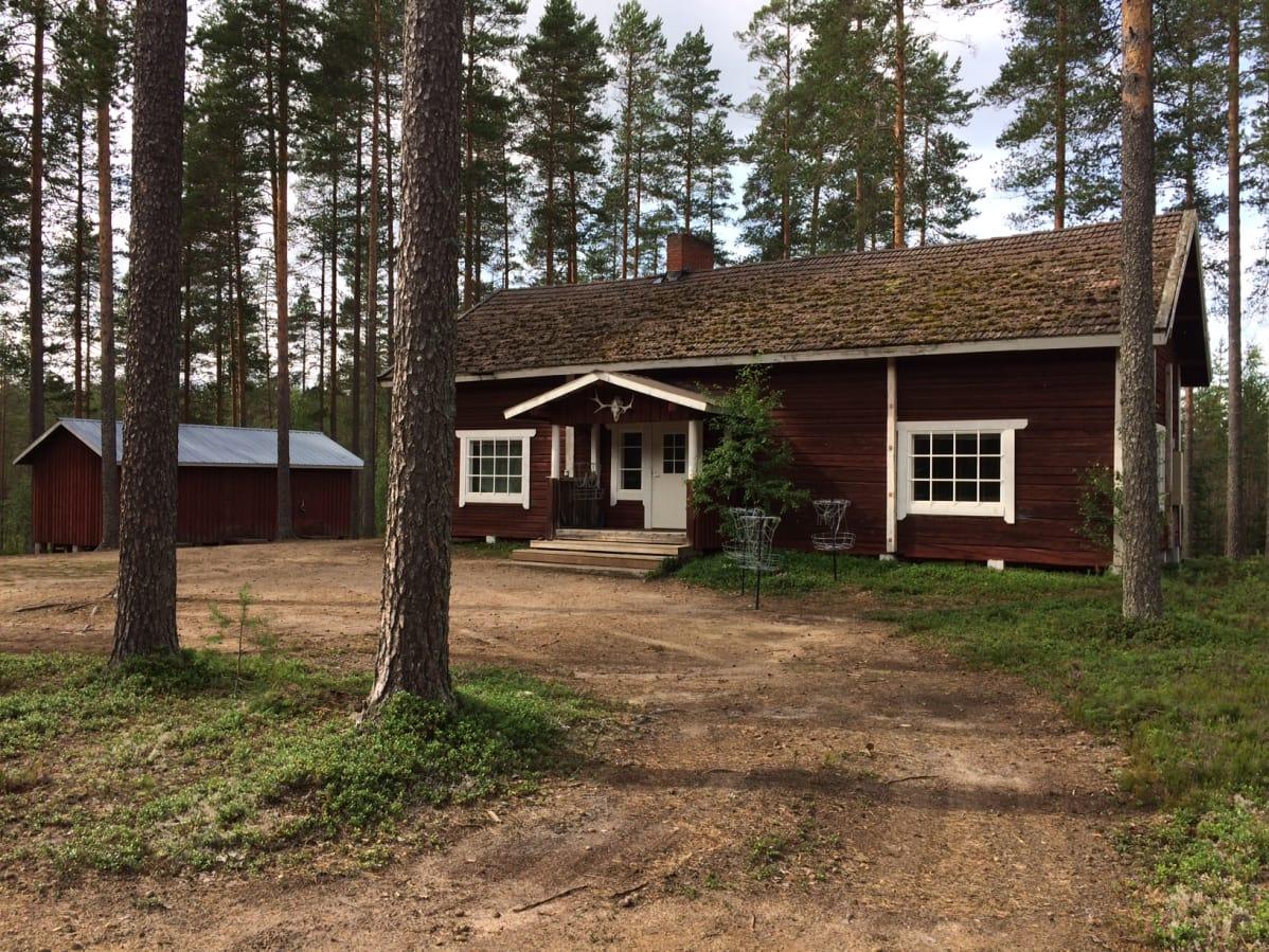 Не «зникли»: посол припустив, щосталося із українськими заробітчанами у Фінляндії
