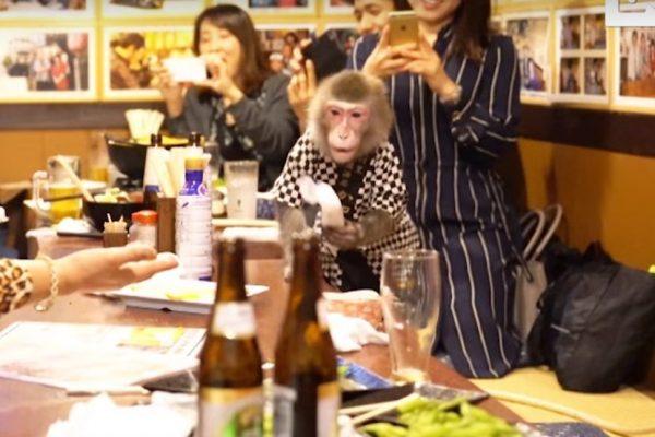 ресторан в японии