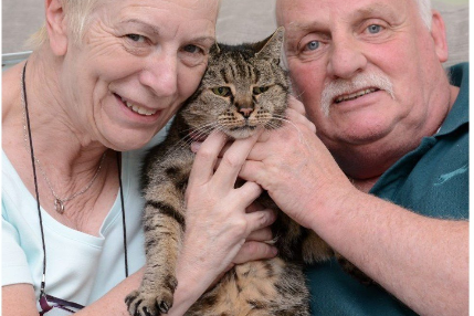 Найтаріший кіт