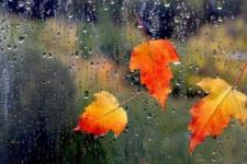 Погода на Покрову