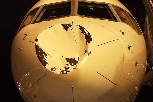 Неопознанный объект разрушил нос самолета склубом НБА наборту