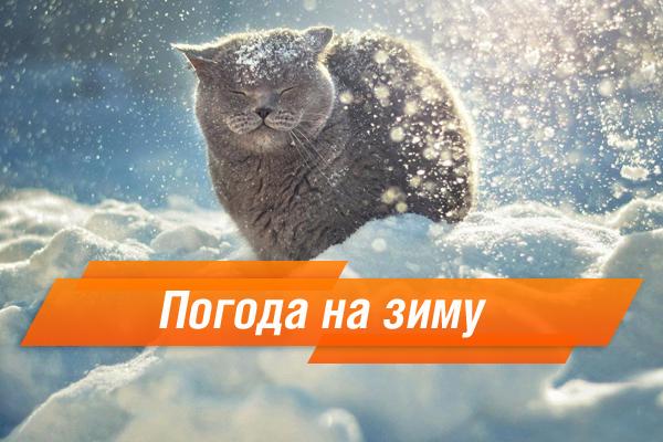 Прячь лыжи: какой будет зима вгосударстве Украина  в2015 году