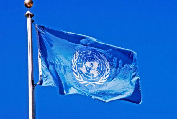 ООН: законопроекту про реінтеграція ОРДЛО «бракує чіткості»