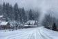 Погода Миколая