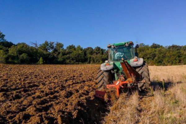 В Украине не будут продавать сельхозземли – закон подписан