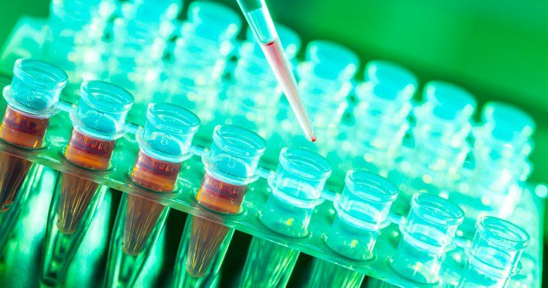 Ученые обнаружили механизм самоуничтожения раковых опухолей