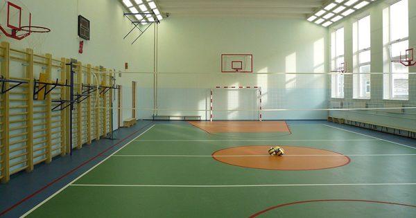 ВДонецкой области науроке физкультуры скончался 11-летний ребенок