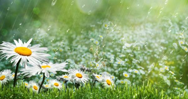 Який місяць літа буде найбільш дощовим - прогноз - photo#32