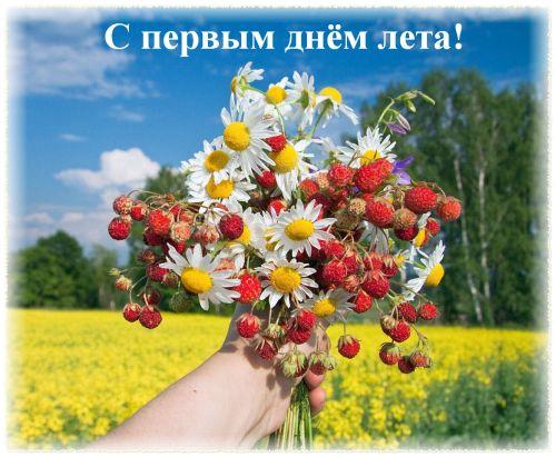 Поздравления с первым Днем лета (с) 47