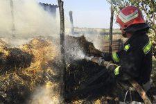 На Кіровоградщині 4-річна дитина згоріла в пожежі