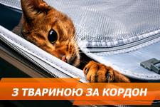 Тварини за кордоном