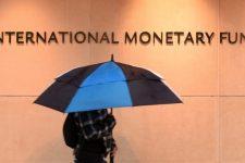 Остались нерешенные вопросы: МВФ ждет от Украины предложений