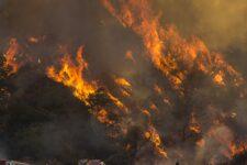 Пожежа у Каліфорнії