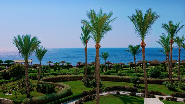 куда поехать в египет зимой