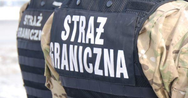 9 пістолетів і півсотні патронів: у Польщі затримали українця