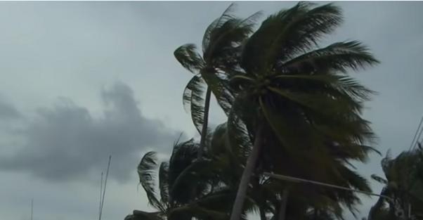 Туристи пакують валізи, йде евакуація: Таїланд накрив шторм Гігантський сом