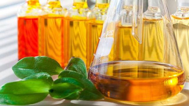 """""""Золота"""" олія. Чому вітчизняний продукт у нас дорожчий, ніж за кордоном"""
