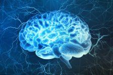Преступники имеют иную структуру мозга – ученые