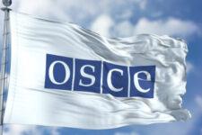 Делегации США, ЕС и Украины требуют от РФ предоставить ОБСЕ полный доступ в Крыму