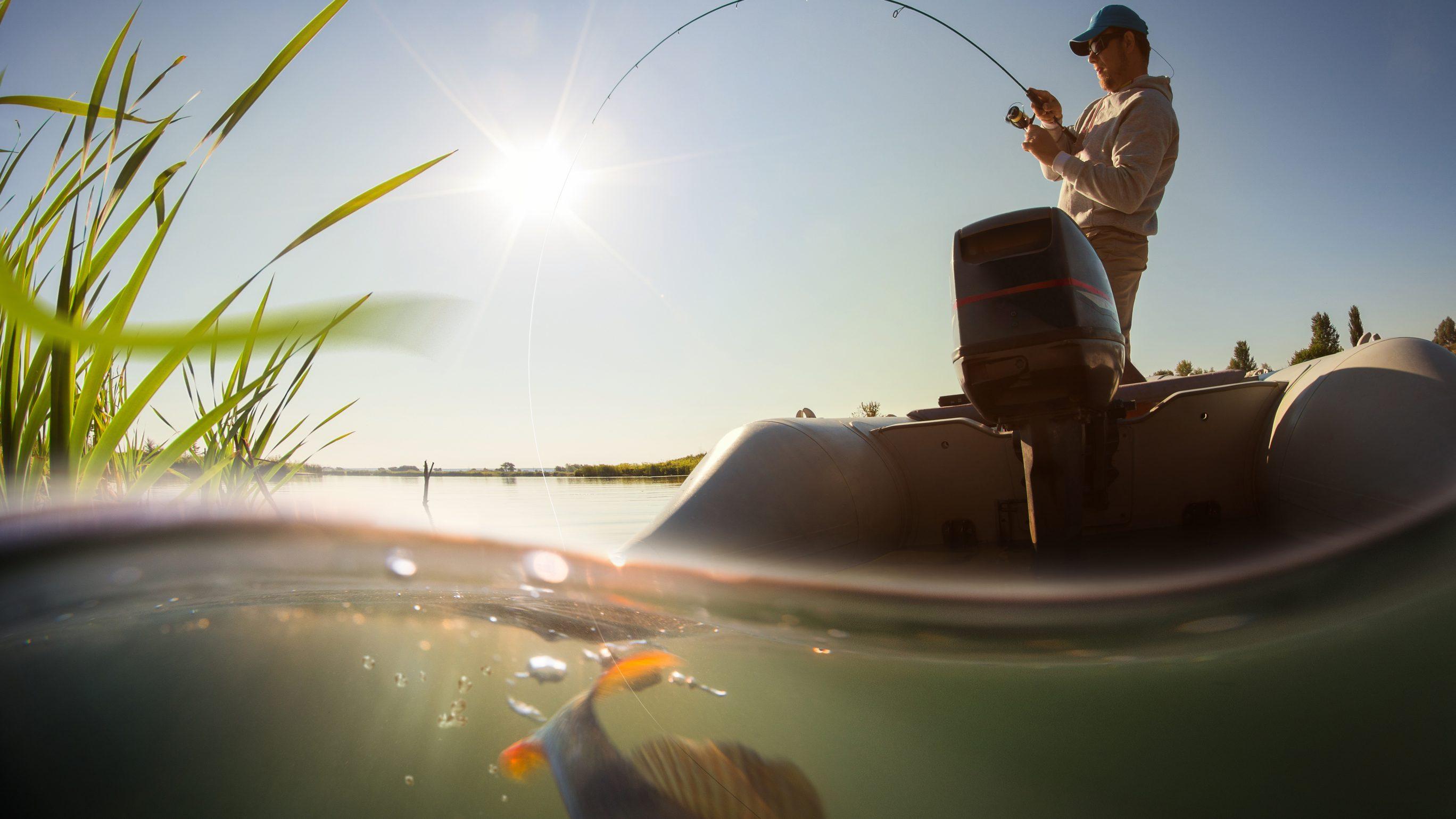 Картинки по запросу Все для вдалої риболовлі.