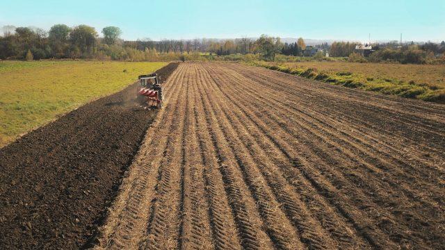 Мораторий на продажу земли: все, что нужно знать, и как подорожают гектары