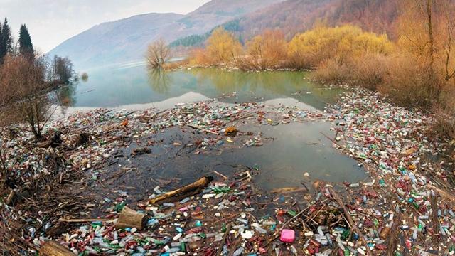 Сортування та утилізація. Як в Україні борються з відходами та пластиком