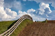 На Закарпатье чиновники незаконно передали в частную собственность почти 17 га земли