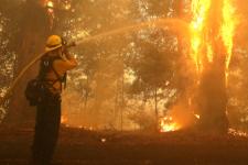 У Каліфорнії оголосили надзвичайний стан через пожежу – йде евакуація