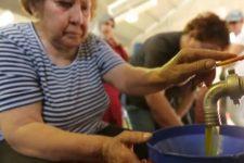 Оливковое масло с Кипра: польза, как выбрать и проверить