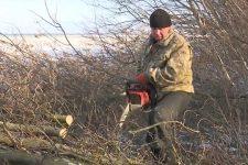 Учителя с топорами и бензопилами. Как отапливают школы на Харьковщине