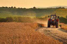 Ринок землі: аграрний комітет рекомендував Раді ухвалити закон