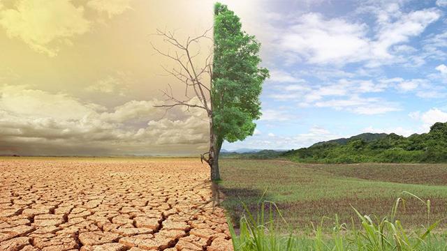 США і ЄС оголосили про спільну боротьбу зі змінами клімату