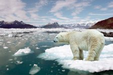 Одеса та Херсон можуть піти під воду: як на Україну вплине глобальне потепління